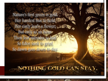 Nothing Gold Can Stay by Robert Frost- Analyzing Poetry