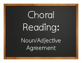 Spanish Noun Adjective Agreement Choral Reading