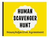 Spanish Noun Adjective Agreement Human Scavenger Hunt