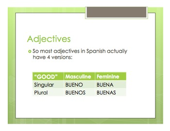 Spanish Noun Adjective Agreement Notes