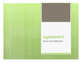 Spanish Noun Adjective Agreement Notes With Video for Distance Learning