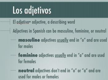 Noun-Adjective Agreement Powerpoint