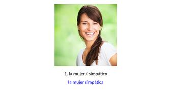 Noun-Adjective Agreement Practice with Photos