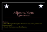 Noun Adjective Worksheet Activity (Spanish)