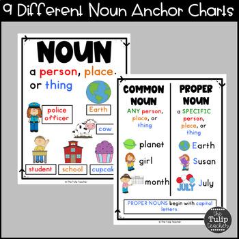Noun Anchor Charts 7 Concepts By The Tulip Teacher Tpt