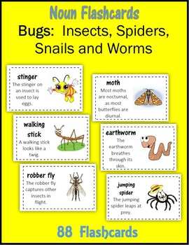 Noun Flashcards:  Bugs (Insects, Spiders, Snails and Worms)