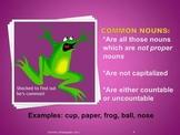 Noun Knowledge