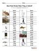 Noun Picks: Person, Place, Thing or Animal