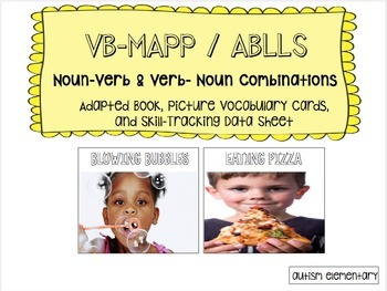 Noun-Verb Adapted Book & Discret Trial Picture Cards for Special Education
