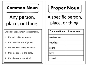 Noun Worksheets or Interactive notebook materials - Common