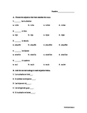 Noun-article-Adjective agreement Quiz