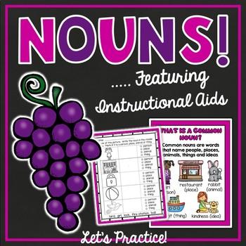 Nouns Unit {Includes Instructional Aids}