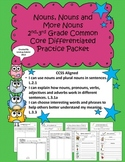 Nouns: 2nd-3rd Grade Common Core Differentiated Practice Packet