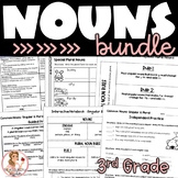 Nouns Interactive Notebook Pages, Activities, and Lesson P
