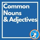 Common Nouns & Adjectives: Grammar PowerPoint 2