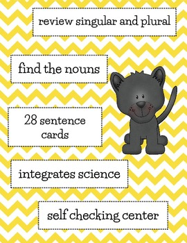 Nouns Advanced Center Activity with Integrated Science