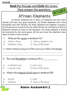 Nouns - Assessments