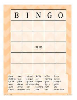 Nouns Game - BINGO {Differentiated}