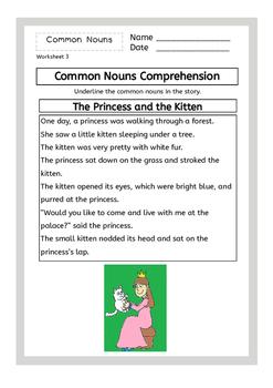 Nouns - Common & Proper