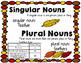 Nouns: Common/Proper, Singular/Plural, Irregular (November Themed)