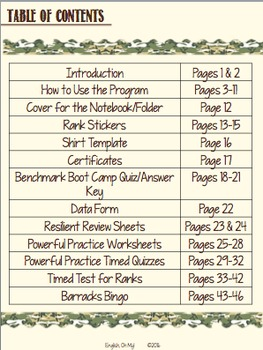 Grammar-Noun Review Sheets, Quizzes -Climbing the Ranks!
