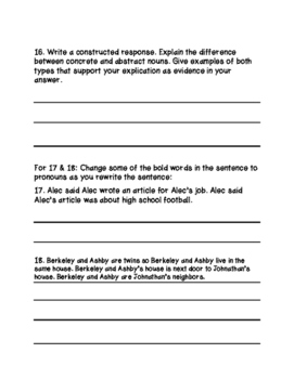 Nouns & Pronouns Test with Interactive Study Guide