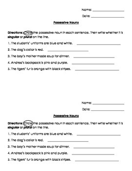 Nouns: Possessive Nouns Quiz/ Test/ Worksheet