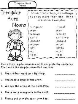 Nouns Student Notebook Pages:  Tabbed for Easy Access!