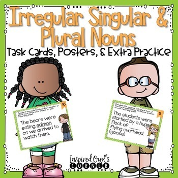 Nouns Task Cards and Extra Practice Bundle