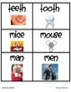 Nouns That Change Common Core L2.1b