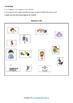 Nouns, Verbs and Adjectives Flipbooks