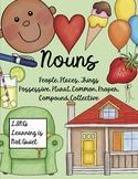 Nouns (What they are/Proper/Common/Singular/Plural/Possessive/Pronouns) Activity