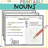 Nouns Worksheet Word Search and Sentences