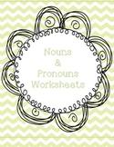 Nouns and Pronouns Worksheet
