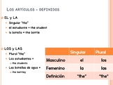 Nouns, articles, plurals, and gender in Spanish