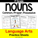Nouns (common, proper, possessive) Common Core Practice Sh