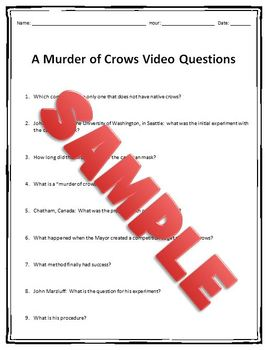 Nova: A Murder of Crows Video Questions