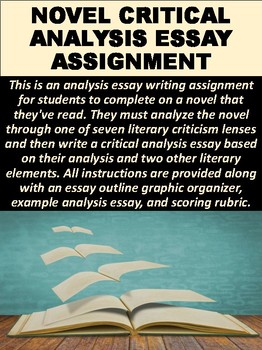 Novel Critical Analysis Essay