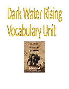 Novel- Dark Water Rising Vocabulary Unit