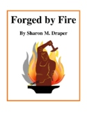 Novel Study, Forged by Fire (by Sharon M. Draper) Study Guide