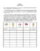 Novel Study, Hatchet (by Gary Paulsen) Study Guide