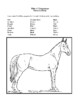 Novel Study, Misty of Chincoteague (by Marguerite Henry) Study Guide