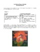 Novel Study, One Hundred Years of Solitude (by Gabeiel Marquez) Study Guide