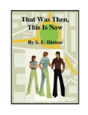That Was Then, This Is Now (by S.E. Hinton) Study Guide