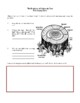 Novel Study, The Evolution of Calpurnia Tate (by Jacqueline Kelly) Study Guide
