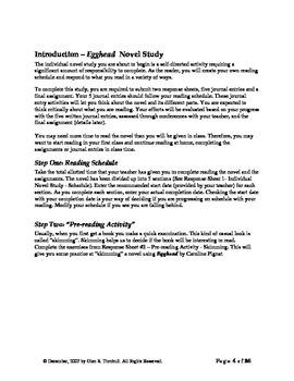 novel study guide for egghead by caroline pignat by books for kids rh teacherspayteachers com Stuy Novel Icon Novel Study