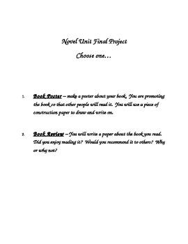 Novel Unit Project Choice