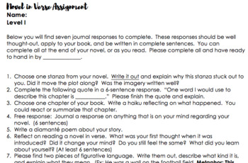 Novel in Verse Assignment (Differentiated)