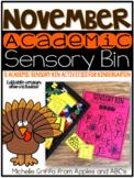 November Academic Sensory Bin