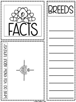 November Fact Files: Collecting Information from Non-Fiction Text